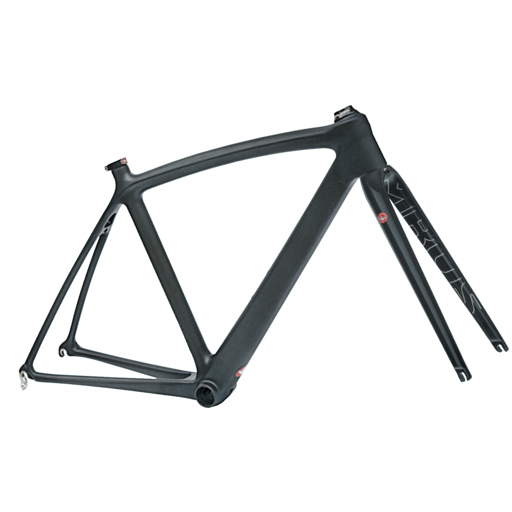 Columbus SLX Raw Carbon Frameset | Triton Cycles