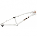 GT Speed Series Alloy PRO Frame 2016